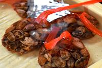あさり、大あさりなど春の貝類